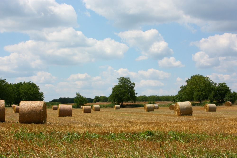 Bales of hay in the Dordogne