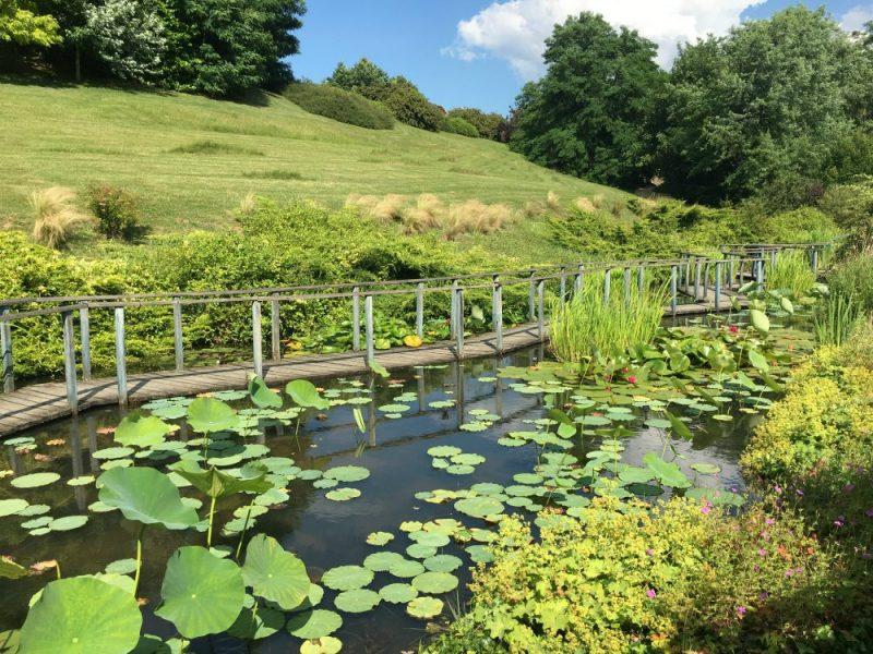 Les Jardins d'eau at Carsac - Dordogne - France