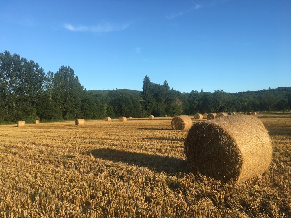 Field behind Le Paradis Campsite